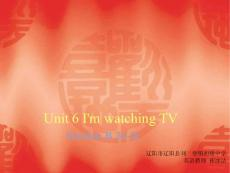 辽阳县刘二堡镇初级中学人教版七年级英语下册Unit 6 I′m watching TV Section B 2a-2c  课件