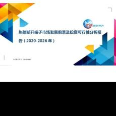 热缩断开端子市场发展前景及投资可行性分析报告(2020-2026年)