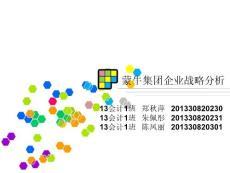 蒙牛集团企业战略分析ppt精选文档