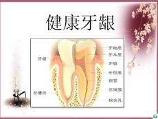 牙齿保健讲座ppt课件