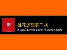 酉阳渝东南民俗风情街项目整体运作思路提案