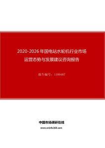 2020年国电站水轮机行业市场运营态势与发展建议咨询报告