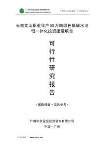 云南文山铝业年产50万吨绿色低碳水电铝一体化可研报告