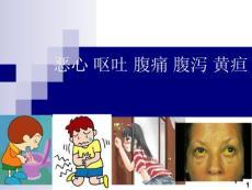 恶心 呕吐 腹痛 腹泻 黄疸ppt精选课件