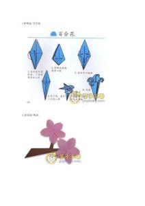 折纸花(转)