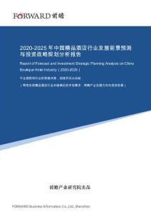 2020-2025年中国精品酒店行业发展前景预测与投资战略规划分析报告