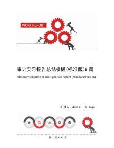 审计实习报告总结模板(标准版)6篇