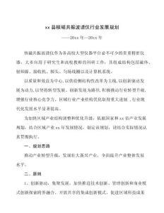 xx县核磁共振波谱仪行业发展规划