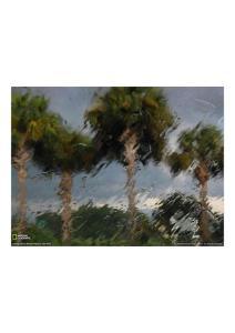 2011年4月9日 Thunderstorm, Florida