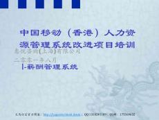 中國某著名通訊公司薪酬管理系統