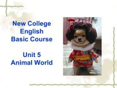 英语教学基础课basic course unit