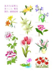花卉、水果、蔬菜、动漫、人物图片大全,边框素材,插图素材