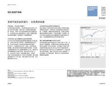 GS SUSTAIN:发现中国企业的潜力-从优秀到卓越-101105