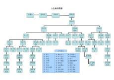人生路径图谱