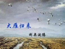 语文课件大雁归来(2)