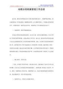 地税分局档案管理工作总结