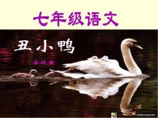 七年级语文,丑小鸭2