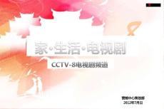 2012年CCTV-8电视剧频道资源新员工培训