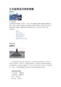 台风级核潜艇