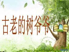 岭南二年级美术第9课给树爷爷画像