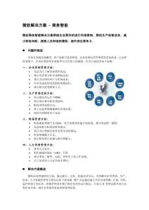 微軟公司--商務智能系統解決方案v1.0