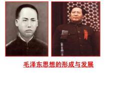 毛泽东思想的形成与发展66