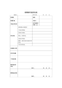 经销商年度评估表
