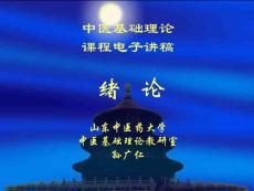 2013年最新山东中医药大学《中医基础理论》课件合集