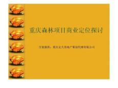重庆森林项目商业定位探讨
