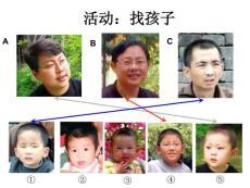 生物的遗传1