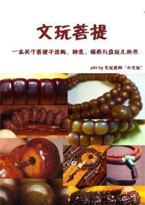 文玩菩提(一本关于菩提子选购、种类、保养与盘玩儿的书)