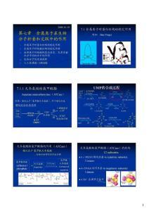 中国科技大学---生物无机化学课件7-----金属离子在生物分子折叠和交联中的作用