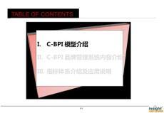 2013年玖熙 NINEWEST品牌研究分析C-BPI数据指标