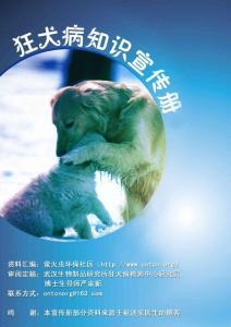 狂犬病知识宣传手册