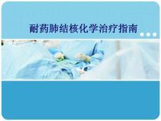 耐药肺结核化学治疗指南