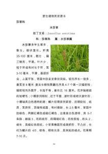 野生动物植物名录